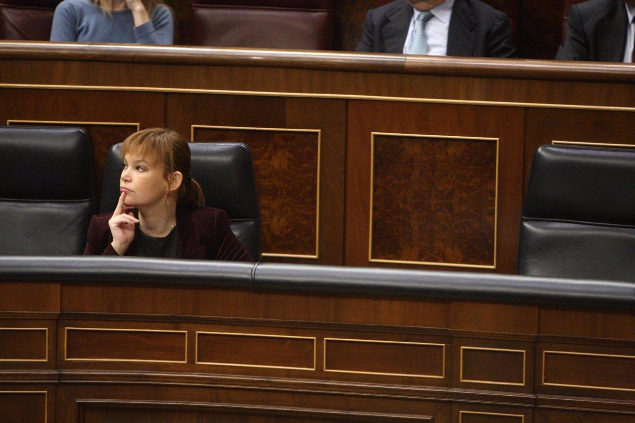 Leire Pajín en el Congreso
