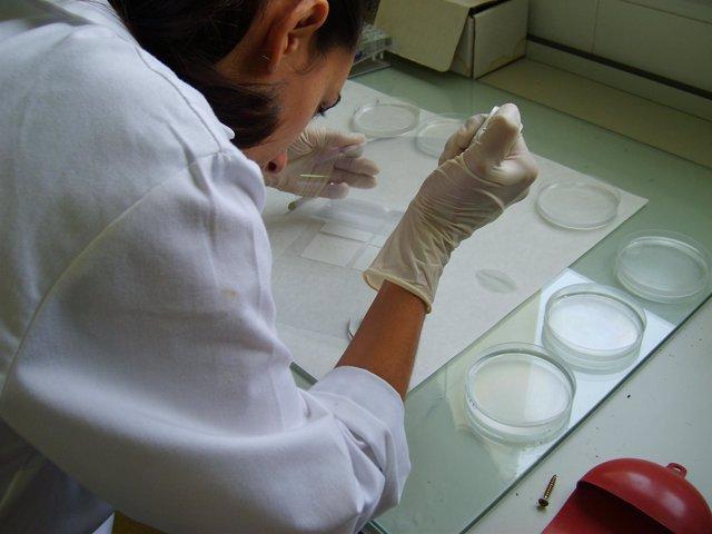 Una investigadora en un laboratorio