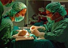 Imagen De Un Trasplante Renal En El Hospital Virgen Del Rocío