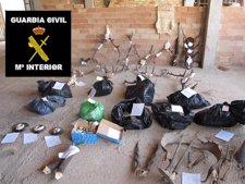 Especies Disecadas Intervenidas En Una Operación De La Guardia Civil