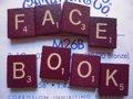 Uno de los primeros inversores de Facebook fija su atención en Brasil