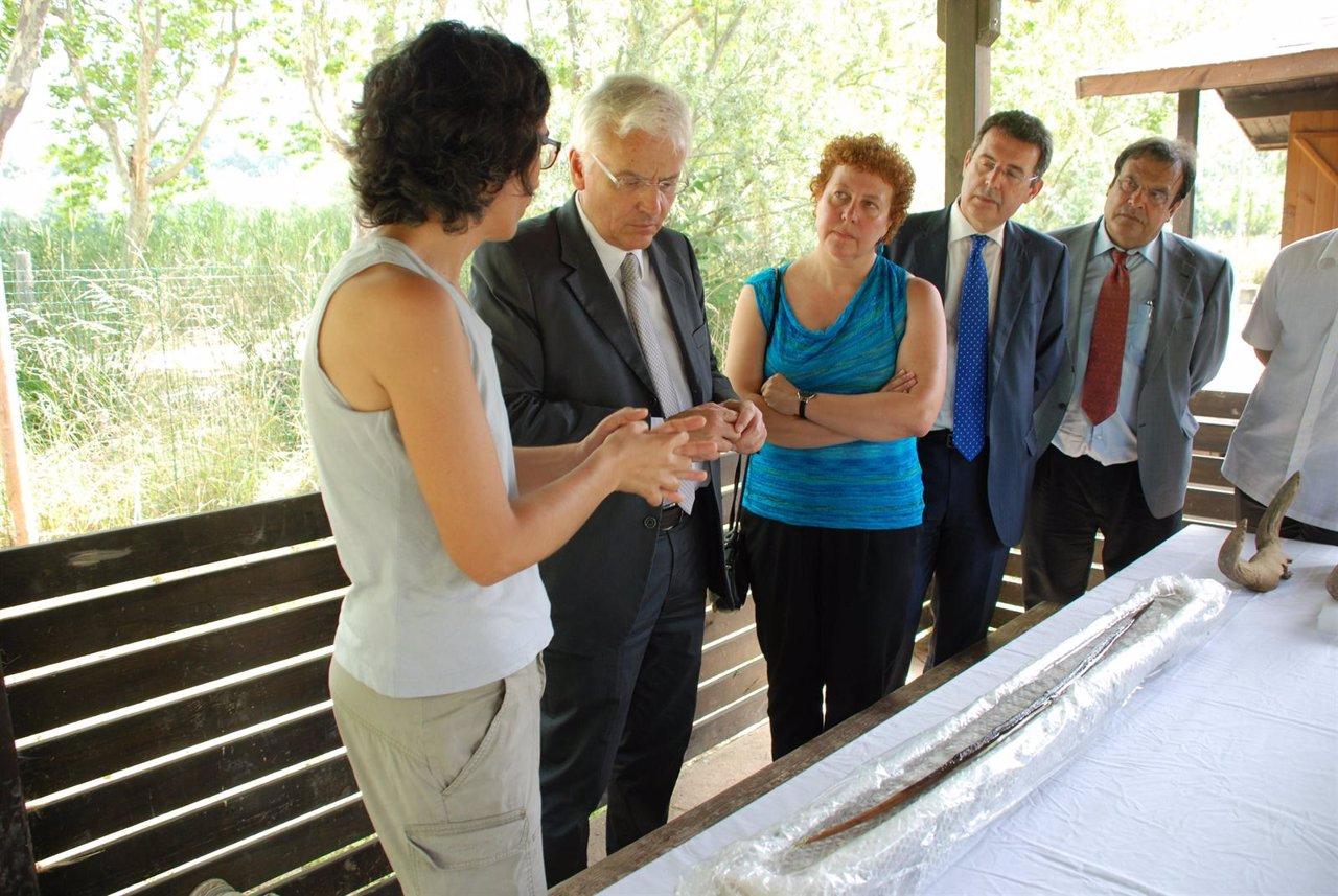 El Conseller F. Mascarell Presenta El Descubrimiento De Un Arco Neolítico