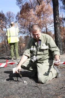 Agentes de Medio Ambiente investigando un incendio forestal