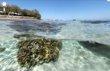 Primeras imágenes del fondo marino desde Street Vi