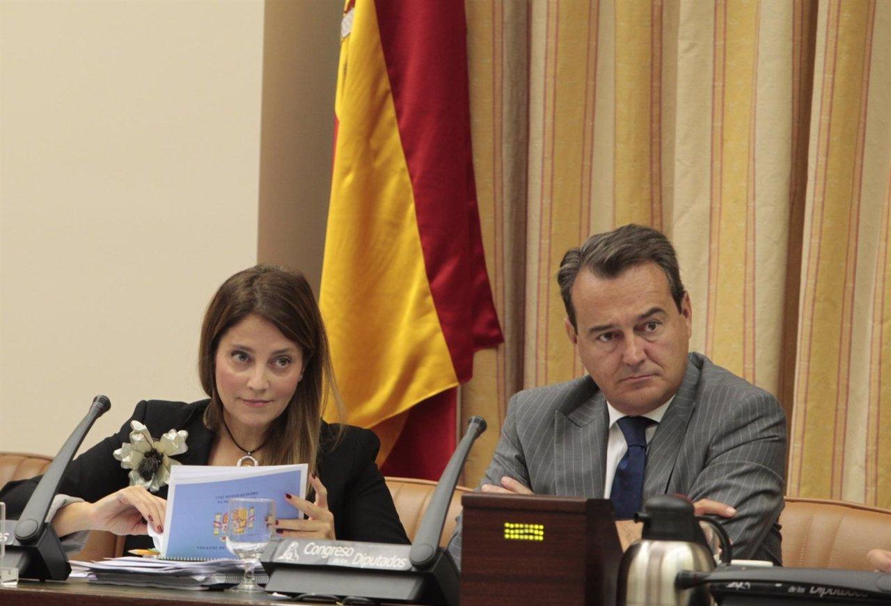 Irene Domínguez-Alcahud, En La Comisión De Defensa