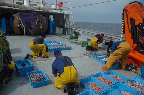 Pesca en el Cantábrico