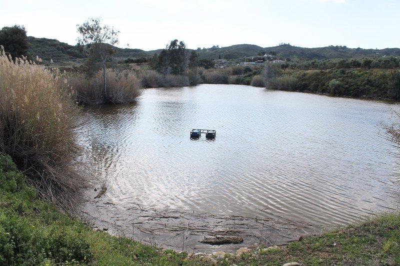 La guardia civil busca un reptil de grandes dimensiones en for Lagunas artificiales construccion