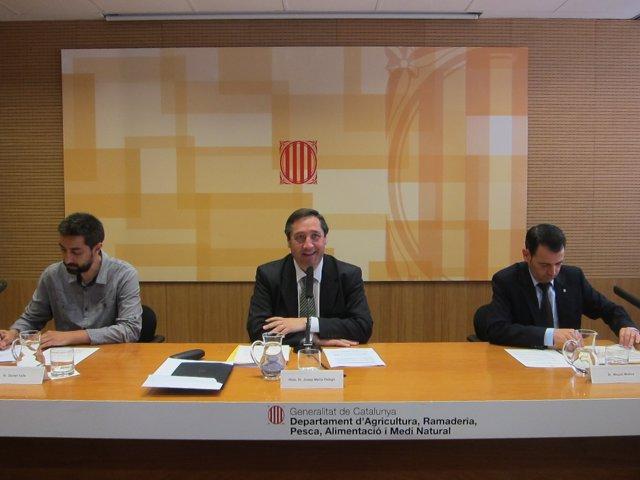 D.Valls, J.M.Pelegrí y M.Molins