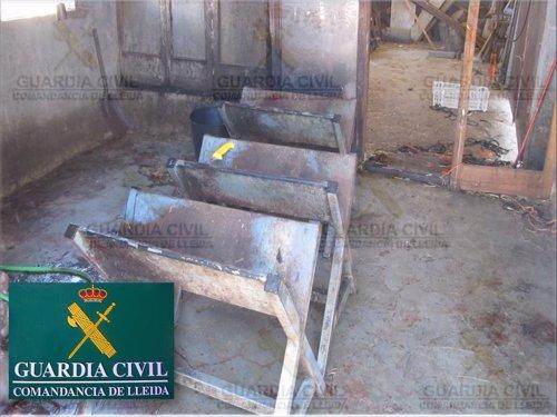 Matadero clandestino localizado en Almacelles