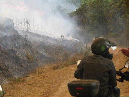 Imputado un hombre por una presunta negligencia que ocasionó el fuego de Cuéllar (Segovia) Fotonoticia_20130705143917_500