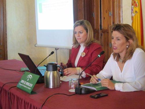Serrano y Ferrer presentan en rueda de prensa los presupuestos para 2014