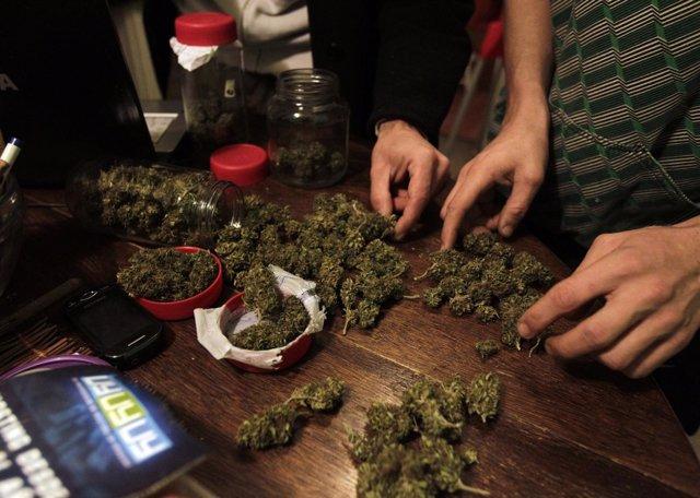 Personas secando marihuana.