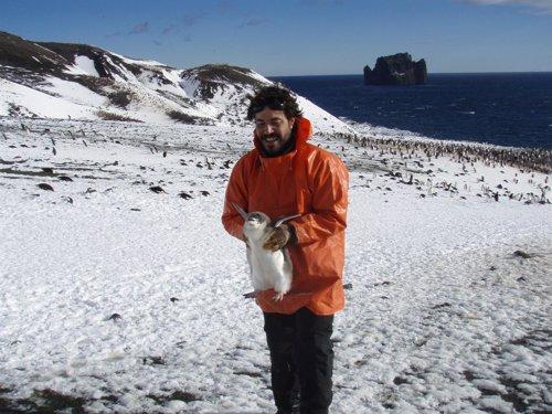 El profesor de Toxicología de la UMU, Miguel Motas Guzmán, en la Antártida