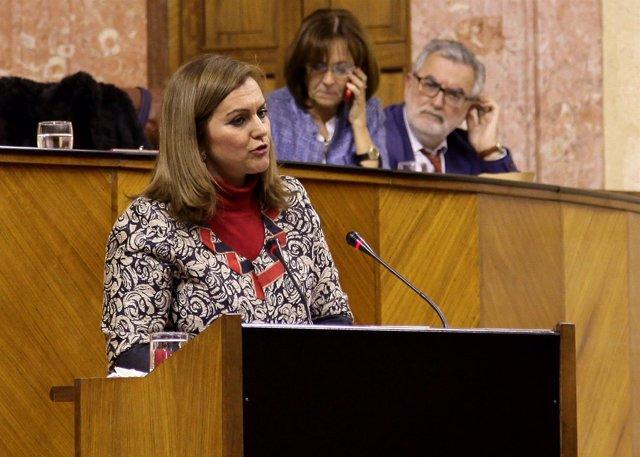 La consejera de Medio Ambiente, María Jesús Serrano, en el Pleno del Parlamento