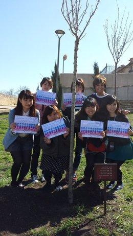 Estudiantes asiáticas plantan cerezos en Segovia con ...