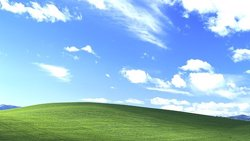 Foto: Windows XP: el fin de una era (MICROSOFT/CHARLES O'REAR)