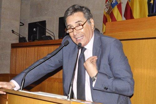 Ricardo Oliván, en la sesión plenaria