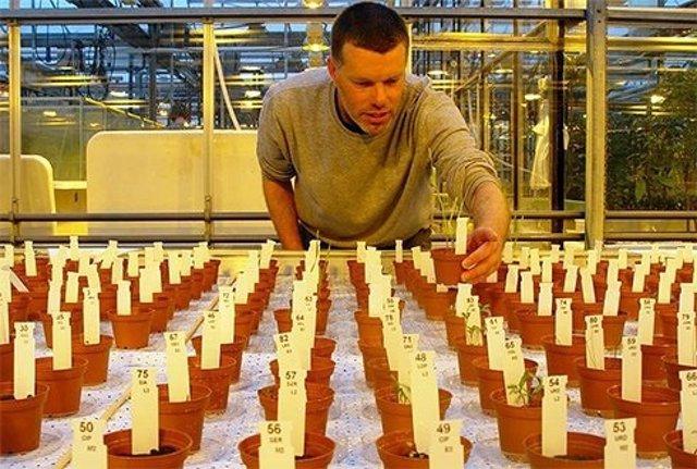 Estudio sobre el cultivo de alimentos en Marte