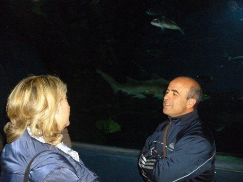 Trinidad Herrera, en el acuario