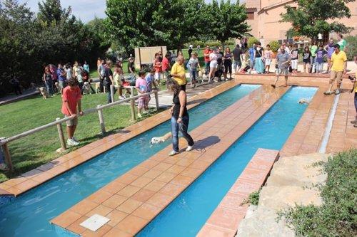 Abre en barcelona el primer parque acu tico de espa a solo for Piscinas para perros grandes