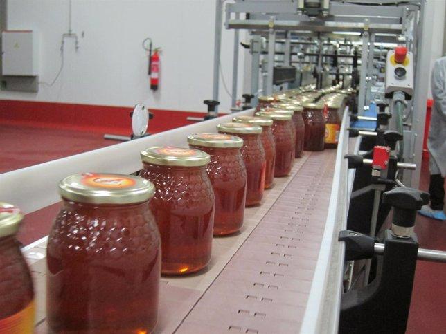 Planta envasadora de miel Feyce en Salamanca
