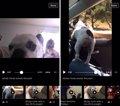 Facebook mostrará más vídeos de los usuarios mientras ves uno