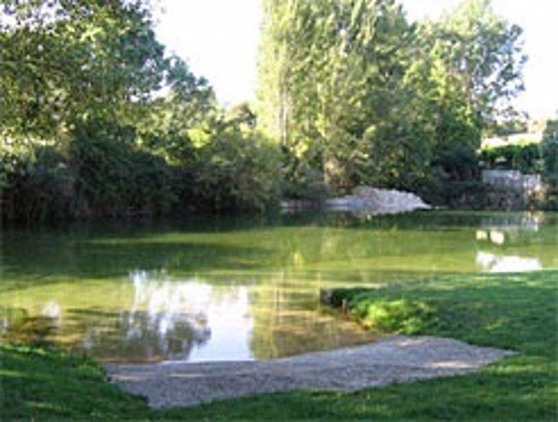 Las diez zonas naturales de ba o de navarra son aptas para for Piscinas naturales zaragoza