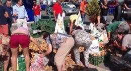 """Foto: Agricultores tiran dos toneladas de patatas en protesta por el """"uso"""" del veto ruso para bajarles los precios (UPA/EUROPA PRESS)"""