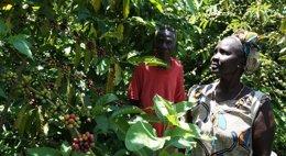 Foto: Nespresso destinará 414 millones hasta 2020 a su programa de sostenibilidad basado en el medio ambiente (NESPRESSO)