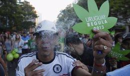 Foto: Escasa participación en el registro para cultivar marihuana (REUTERS)