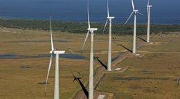 Foto: Acciona firma su séptimo contrato de aerogeneradores en Brasil (CEDIDA)