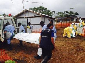 Foto: La OMS eleva a 1.552 los muertos por ébola en África (HANDOUT . / REUTERS)