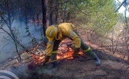 Foto: Extinguido el incendio forestal declarado en el camino de Malpica de Cartaya (Huelva) (EUROPA PRESS/INFOCAT/Archivo)