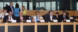 Foto: Una delegación de eurodiputados socialistas viajará el domingo a Jerusalén y Ramala (GRUPO SOCIALISTA EUROPEO)