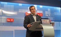 """Foto: El PSN dice que en el futuro de Navarra """"no se vislumbra a Barcina"""" porque es """"sinónimo de recortes e inestabilidad"""" (EUROPA PRESS)"""