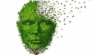 Diez signos de alarma para detectar el Alzheimer