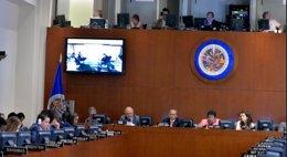 Foto: Más de 500 organizaciones debatirán en Guatemala sobre las drogas en América (OEA)