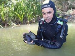 Foto: Nuevas poblaciones de náyades en el Ebro (CHE)