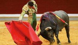Foto: El Constitucional permite que regresen las corridas de toros a Bogotá tras la prohibición de la alcaldía (MIGUEL PÉREZ-ARADROS)