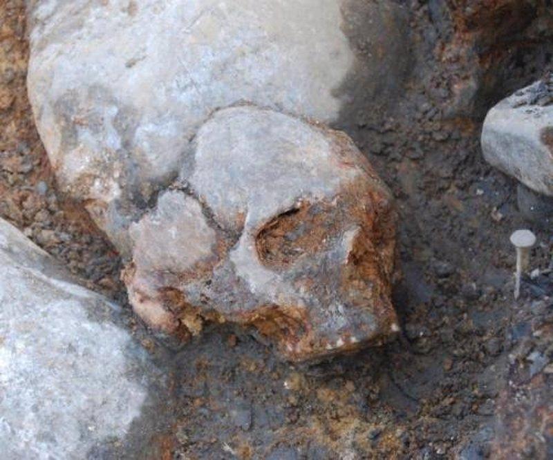 Un tercer grupo de antiguos humanos a�adido al �rbol geneal�gico de los europeos