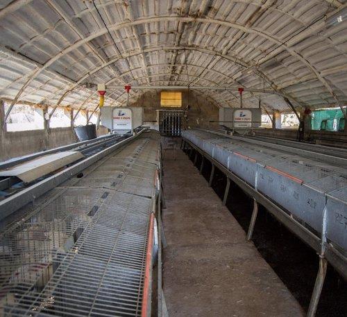 Imagen de la granja de conejos Ricardo Poblador (Zaragoza)