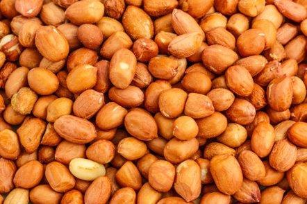 Foto: El cacahuete tostado, más alérgeno que el crudo (GETTY)