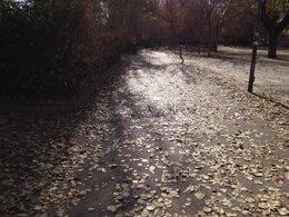 Foto: El otoño comienza en la madrugada de este martes (EUROPA PRESS)