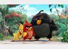 Foto: Primera imagen de la película para cine de Angry Birds