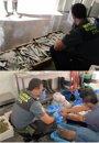 Foto: Guardia Civil decomisa 178 kilos de pescado procedente de capturas furtivas