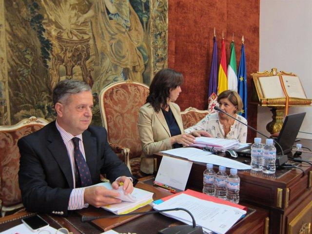 El pleno de la diputaci n insta a la junta a la conversi n for Oficina comarcal agraria