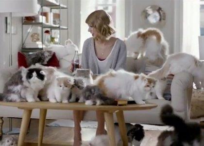 Foto: Taylor Swift y su pasión 'desenfrenada' por los gatos