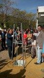 Foto: Primera piedra del proyecto del nuevo centro de mayores del Polígono Sur