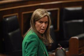 El Congreso votará la petición del PSOE de cesar a Mato el martes 28