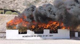 Foto: Incineran más de 12 toneladas de marihuana en Tijuana (México) (NOTIMEX)